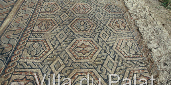 Mosaic: part of a carpet